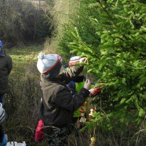 Lesní pedagogika v 2.A