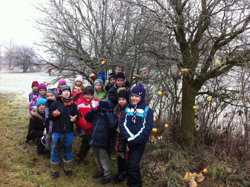 Projekt 2.B – Kouzlo lesa, děti s nazdobeným stromem plody pro ptáky
