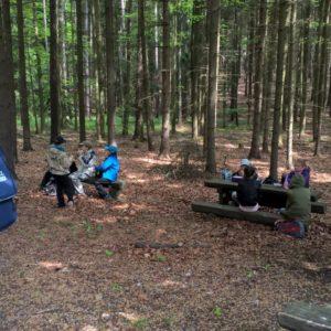 projekt Lesní rovnováha 4. třída