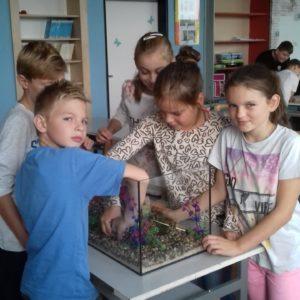Děti sází rostlinky do třídního akvária