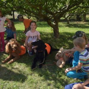 Psi odpočívají ve stínu, děti si je hladí