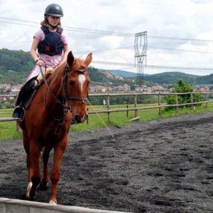 Kdo už nemůže, koník pomůže