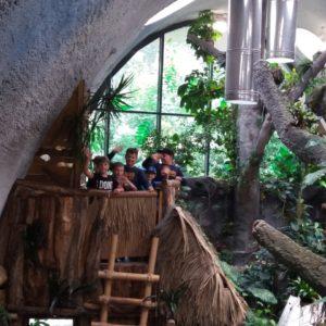 v tropickém ráji